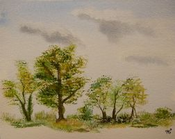 Watercolour Trees by ArmelleS