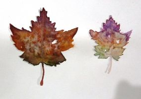 Watercolour leaves by Nomore4s