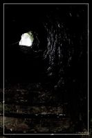 Enter the cave 1 by 0-Photocyte
