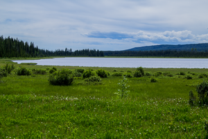 Field and a Lake by oddmountain