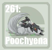 261 Poochyena by Pokedex