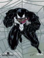 The Original Venom by mdavidct