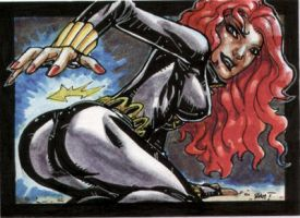 Black Widow Sketch Card by RAHeight2002-2012