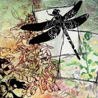 Dragonfly Dreams by HelenParkinson