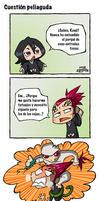 Bleach: Cuestion peliaguda by Durandana