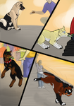 Street Dogs - Page 3 by xXAkilaXx