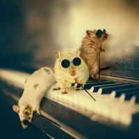 Three blind mice by Neighya