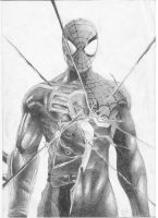 Spider-Man: Shattered Dimensions - Pencil Art by FrancoTieppo