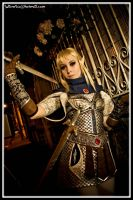 High Elf Shadow Warrior by NikitaCosplay