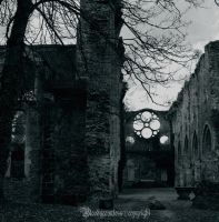 Abbey of Vaulx de cernay by CountessBloody
