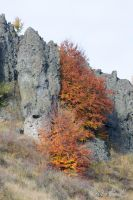 autumn in the mountains 03 by albuemil