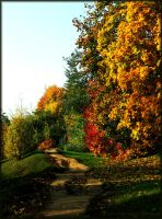 Road to autumn. by VeIra-girl