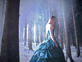 Woodland winter 1 by Aphoticbeauty