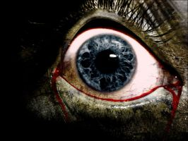 the eye 1099 by LuciferOfDarkness