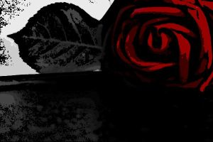Death of a Rose by AnTheilo