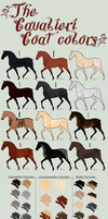 The Cavalieri Coat Colors by dontkillthekarma