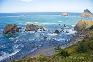 Northwest Coast by A-Glass-Brightly