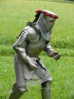 armor poses 11 by Wolkenfels-Stock