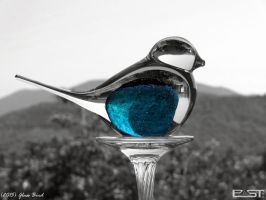 Glass Bird by PaSt1978
