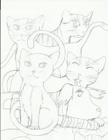 ASPCA Support Drawing by h-chan1316