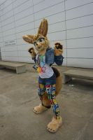 Xolani Fennec at Anthrocon 2015 by TwerkOnThatShark