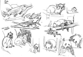 Jia Jia and other animals by Dedasaur