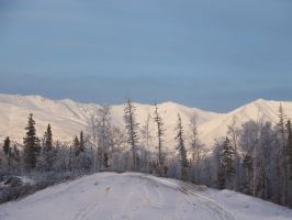 Winter In Wasilla Park 2 by Just-A-Little-Knotty