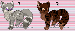 cat adopts -closed- by gold-adopts