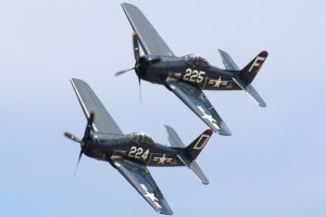 F8F Bearcats by harbingerdawn