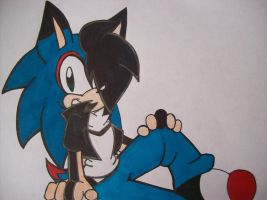 :AT: Zonic the Hedgehog by Yenri
