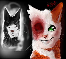 Brightheart and Swiftpaw - My heart is broken by TheHomicidalPigeon