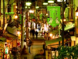 Welcome to Yanaka by jihel