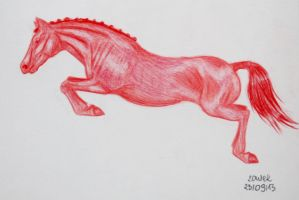 Jumping Red by Salvada