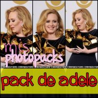 pack 2 de adele by kamilitapiglet