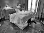 The carnivorous bed by SUDOR