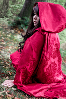 Red Riding Hood [Once Upon a Time] - Sitting there by Sayuri-Shinichi