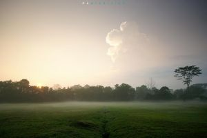 Color of The Morning 104 by dearchivism
