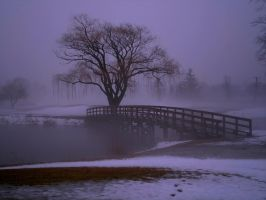 Rain, Snow, and Fog 6 by Jamesbaack