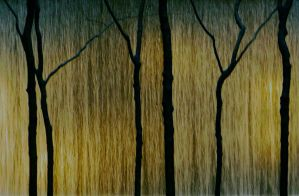 water and light curtain by iram