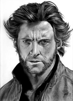 Wolverine by inyourfacemakeupart