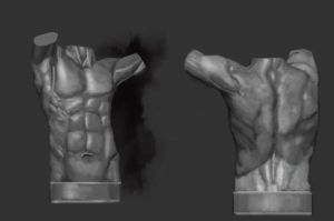 Male Torso Value Study by TheSilentDane