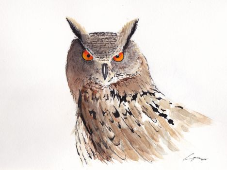 Horned owl by naihtsirk