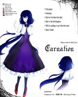 Carnation Info Sheet by yuuike