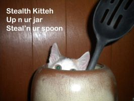 LOL - Stealth Kitteh by sidneyeileen