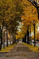 Vienna by Aksel999