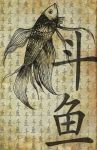 Fighting Fish by vernisse