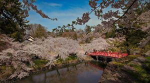 Hirosaki Bridge by maxre
