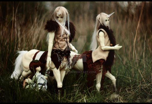 Centaurs-Family by Kaalii