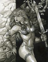 Red Sonja by RichardCox