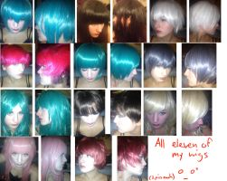 ALL of the Wigs DX by skusil